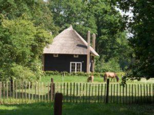 Overig OV223 - Nederland - Overijssel - 5 personen afbeelding
