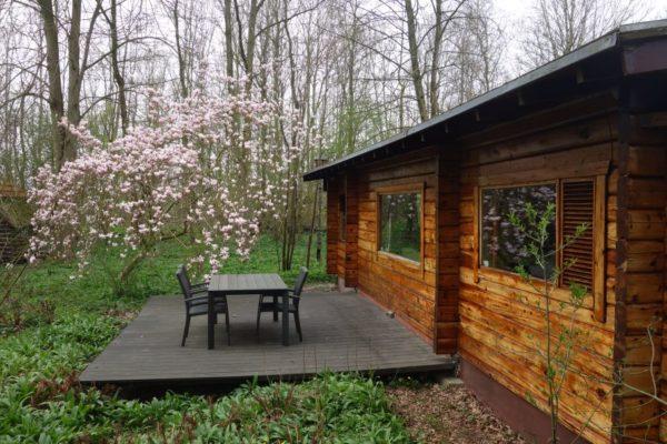 Natuurhuisje in Midwolda 32074 - Nederland - Groningen - 2 personen